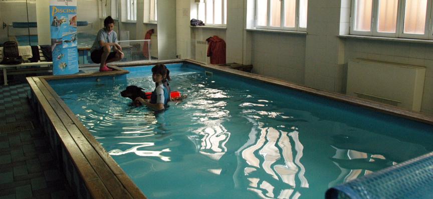 piscina_per_cani_centro_cinofilo_europeo